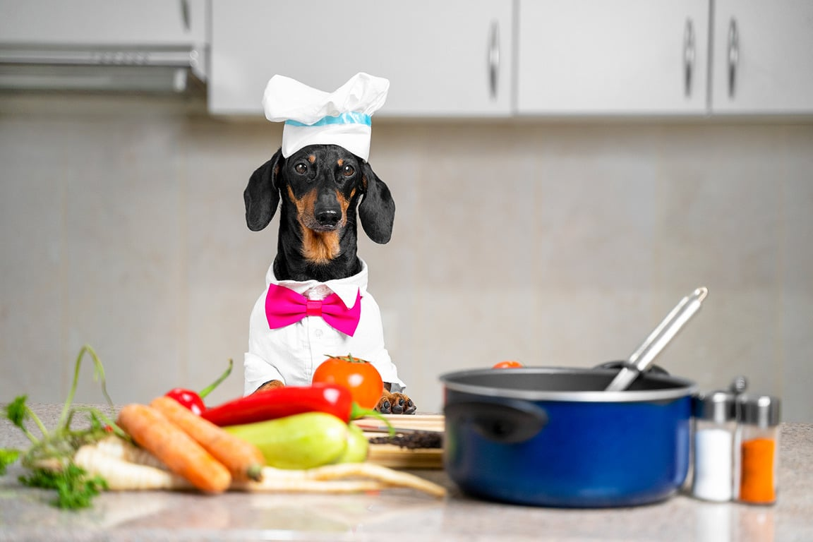 Dog about to cook a delicious, low cost meal