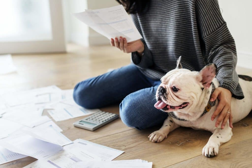Woman and dog going through finances in order to save money.